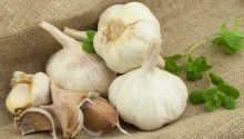 Garlic - What Diet Helps Prevent Cancer