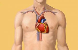 Cardiovascular Medication